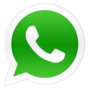 WhatsApp, WhatsThat?