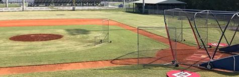 Spring Baseball Tryouts