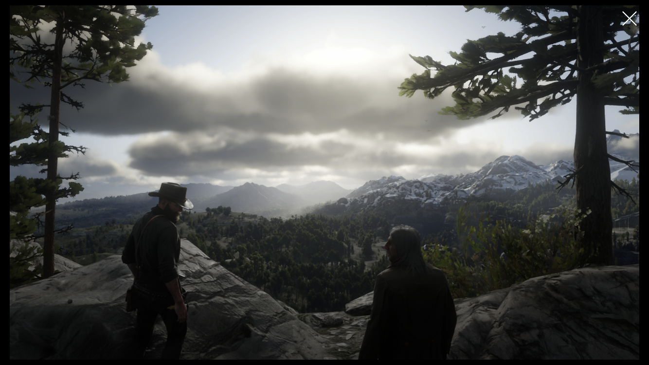 Red Dead Redemption 2 review – Revolution