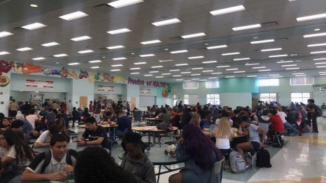 School lunch favorites